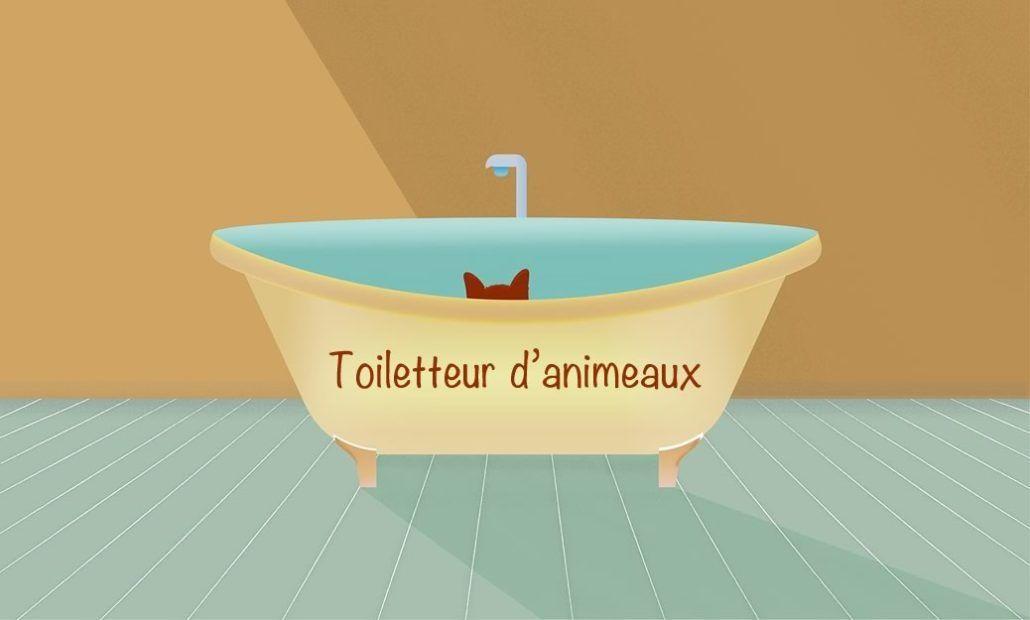 Zoom sur le métier de toiletteur d'animaux