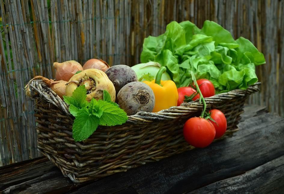 Vendre les fruits et légumes frais de son jardin pour arrondir ses fins de mois