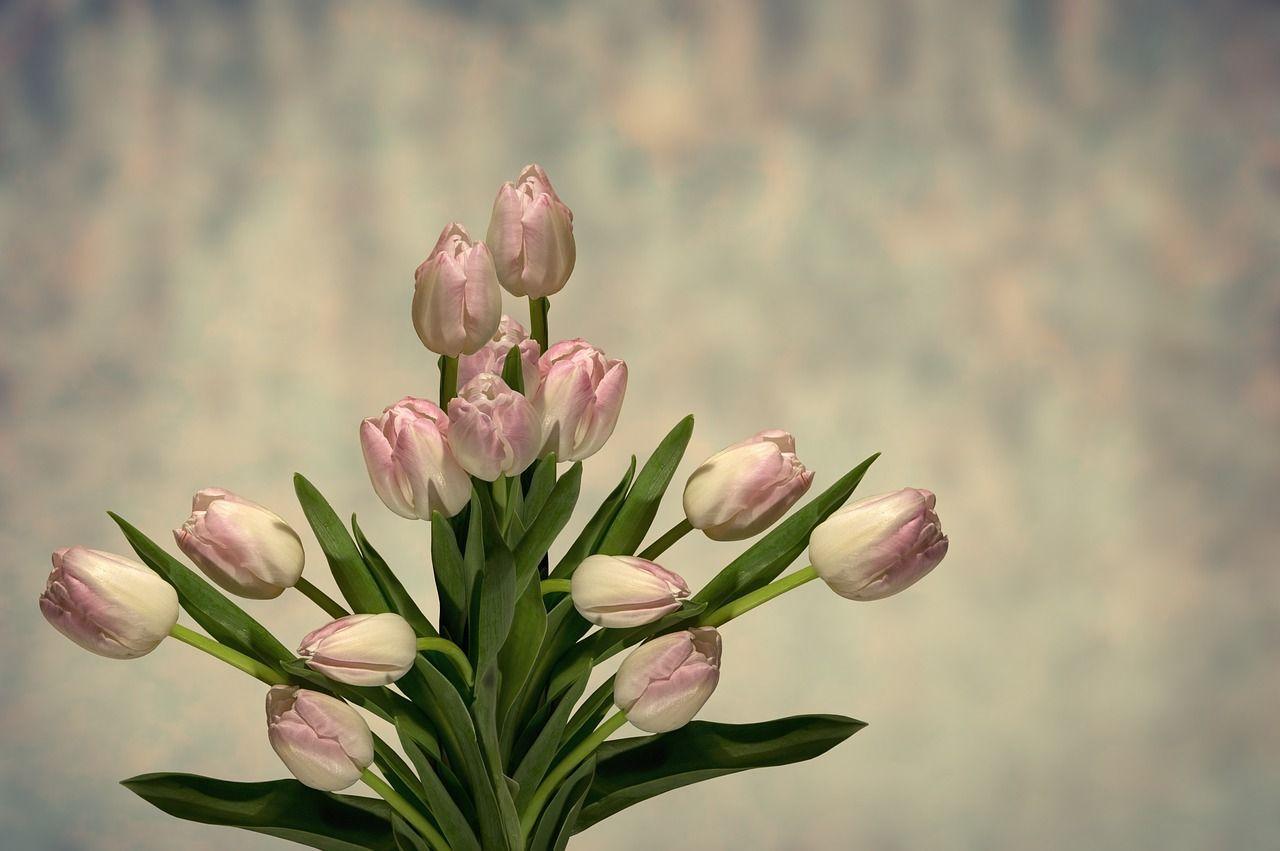 Comment créer son entreprise individuelle de fleuriste en ligne