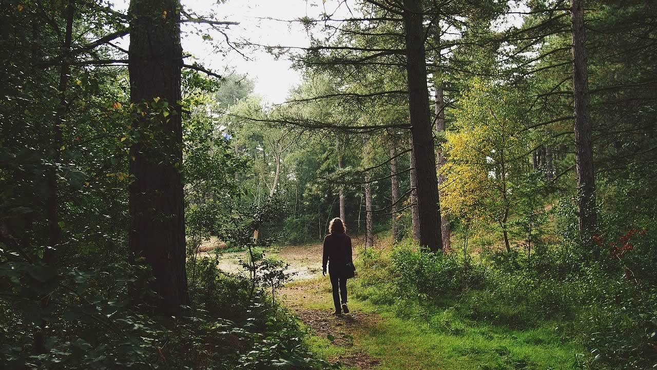 Femme dans une forêt